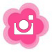 poshpuff-instagram.jpg
