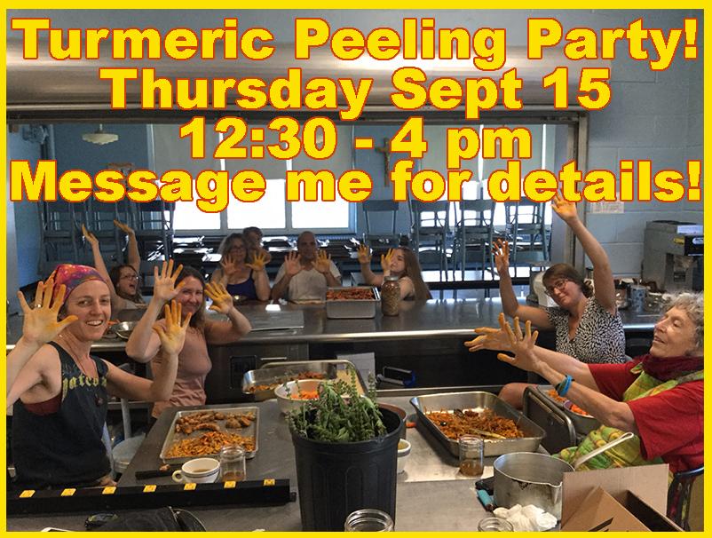 Turmeric Peeling Party Sept.jpg