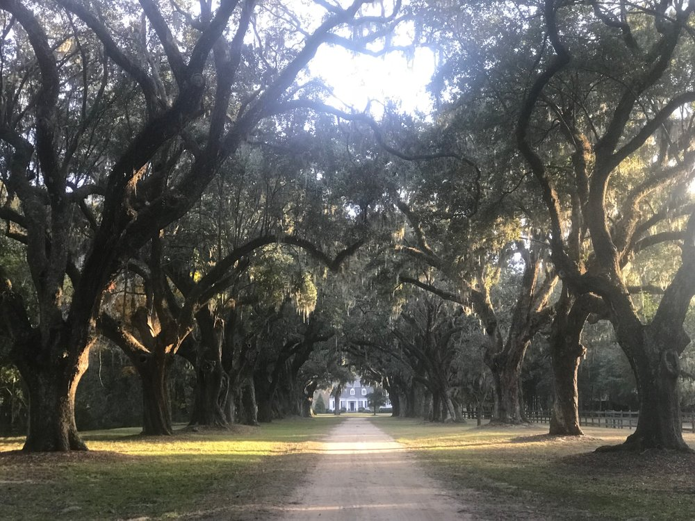 The entrance to the Oakland Plantation in Mount Pleasant, SC.