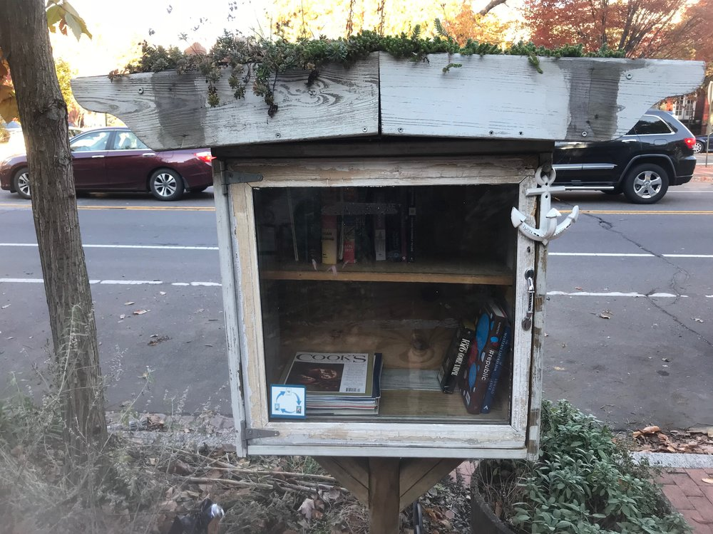 A Little Free Library box in Washington, DC