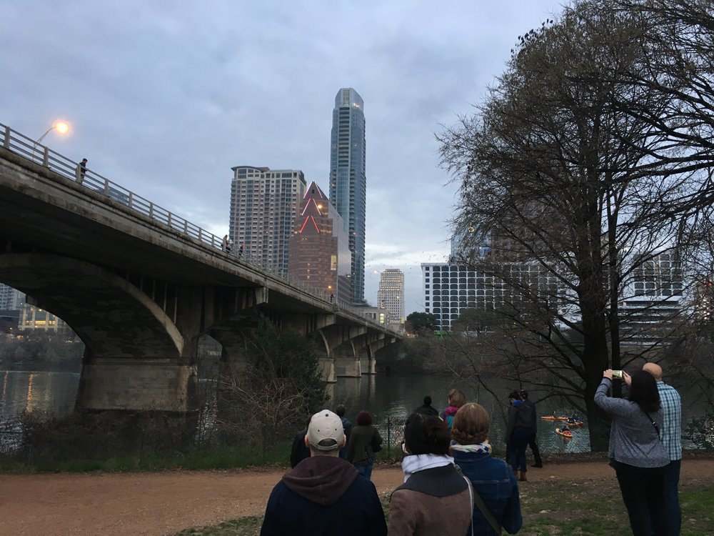 Watching the bats fly from under the Congress Avenue Bridge in Austin.