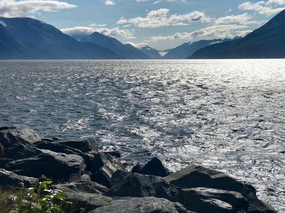 Alaska's Seward Highway hugs the coast of the Turnagain Arm, home of beluga whales, Dall sheep and glaciers.