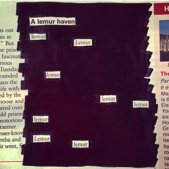 """""""Lemur Haven"""" :P"""