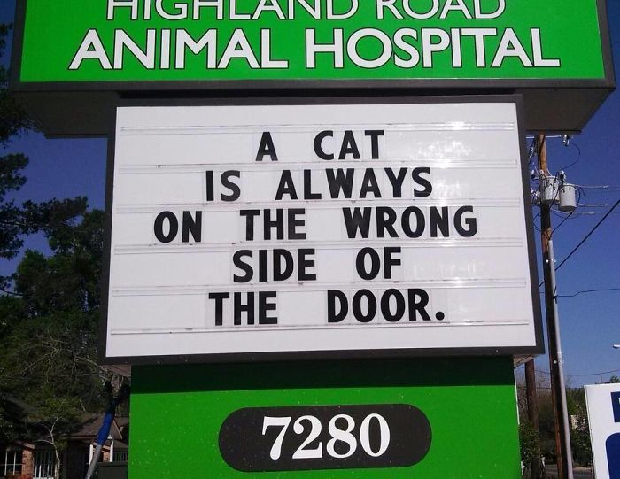 funny-veterinarian-signs-59ae5498a8104__700.jpg