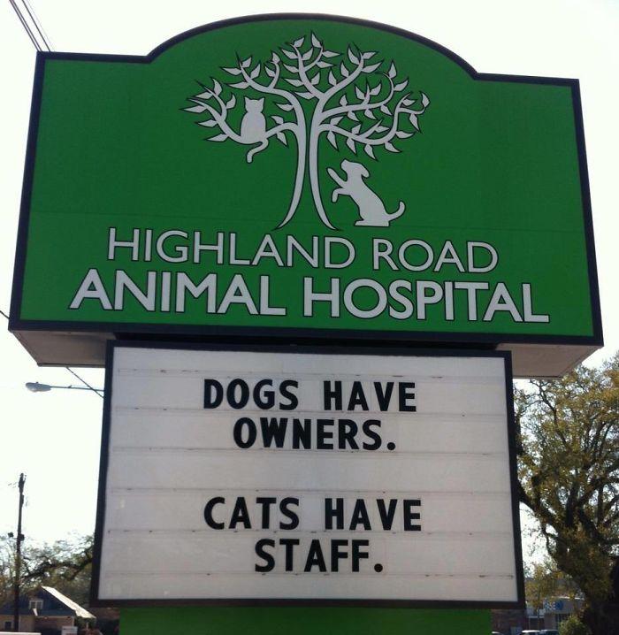 funny-veterinarian-signs-59ae5406674d5__700.jpg