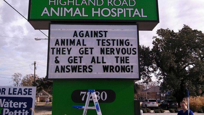 funny-veterinarian-signs-59ae551a3cbda__700.jpg