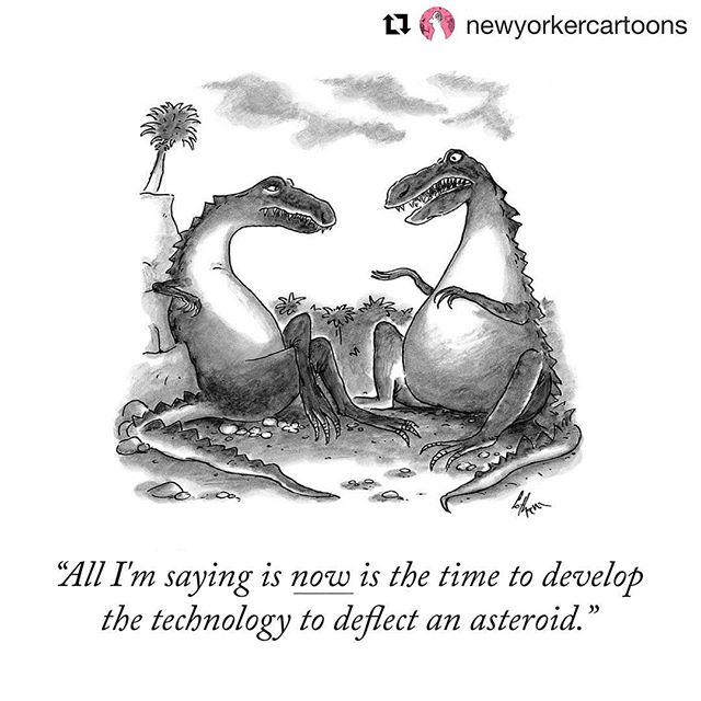 Planning is everything! Avoid asteroids, slow growth, high turnover, and a stagnant team by creating the foundation for your workplace culture & building a hiring plan. Hands-on workshop with IRL experts at #RealTalk: Startup Hiring in NYC. Link in bio! . . #Repost @newyorkercartoons ・・・ #startups #startuplife #entrepreneur #dobusinessbetter #diversityandinclusion #siliconalley #workplaceculture #hiring #howto #buildteams .  A cartoon by Frank Cotham, from 1998. #TNYcartoons