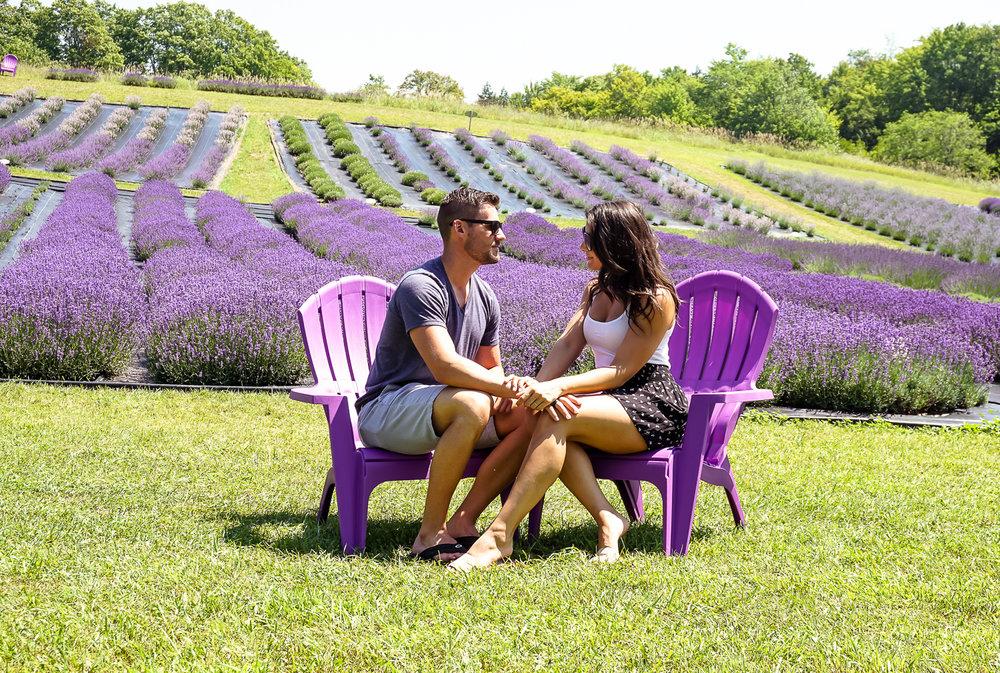 lavenderfieldsreedit (40 of 45).jpg
