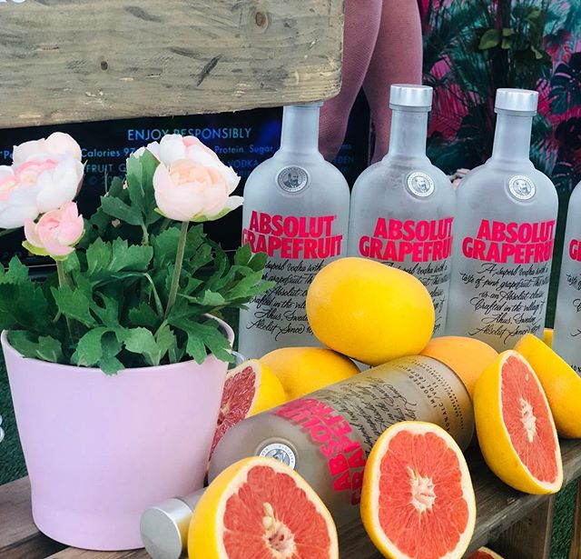 Drink of the month‼️ Happy Women's day 🌷🌷 Absolut Grapefruit and tonic! 🍊🍸 📌Ingredients  1½ Parts Absolut Grapefruit @primosobe  4 Parts Tonic Water 1 Wedge Grapefruit 📌How to mix  Fill a highball glass with ice cubes. Add all ingredients. Stir. Garnish with grapefruit. Enjoy it! 😉  #absolut #vodka #absolutgrapefruit #cocktails #miami #miamibeach #miamidrinks #southbeach #collinsavenue #delanomiami #whotel #whotelsouthbeach #onehotelmiami #setaimiami #mokaimiami #myntlounge #thewallmiami #miamitourism #miaminightlife #faenamiamibeach #fontainebleaumiami #miamiliquorstore #bestliquorstore #miamilifestyle #happywomensday #internationalwomensday