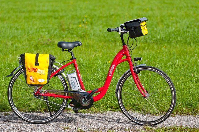 8 speed Pedelec ebike with back pedal brake