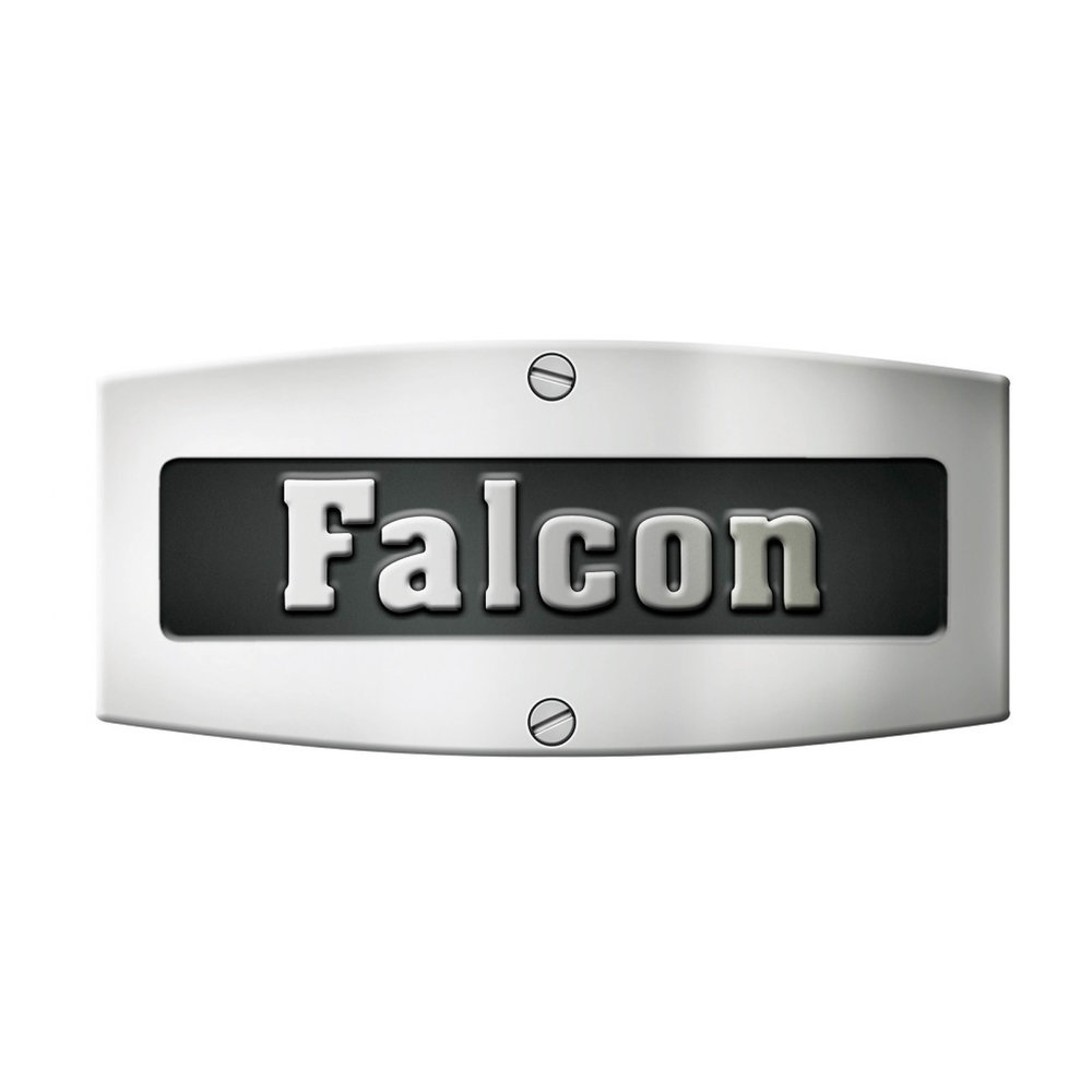 Falcon - resized.jpg