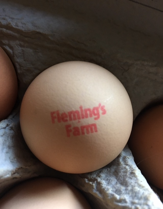 An egg from one of Jamell's chickens, provided by him for this post