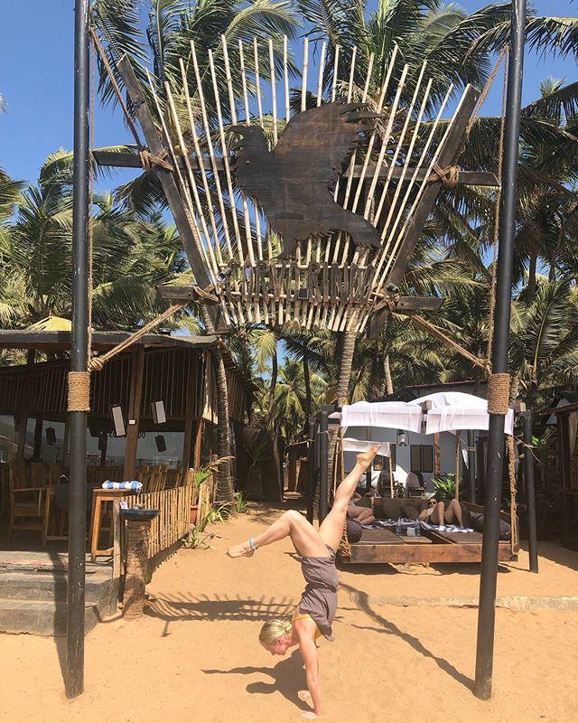 Yoga Retreat Has Commenced  #corvorindo #goa #india #jennykontosyoga #yogaretreat #nofilter #southgoa #bepresent #inversion #yoga #yogi #yogagirl #beachyoga #yogalove #travelingyogi #joblove