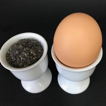 chia-egg-substitute