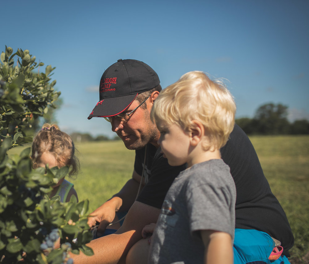 Family connecting while searching for blueberries