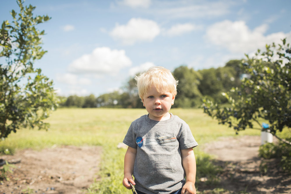 boy looking into camera at blueberry farm, connected and powerful
