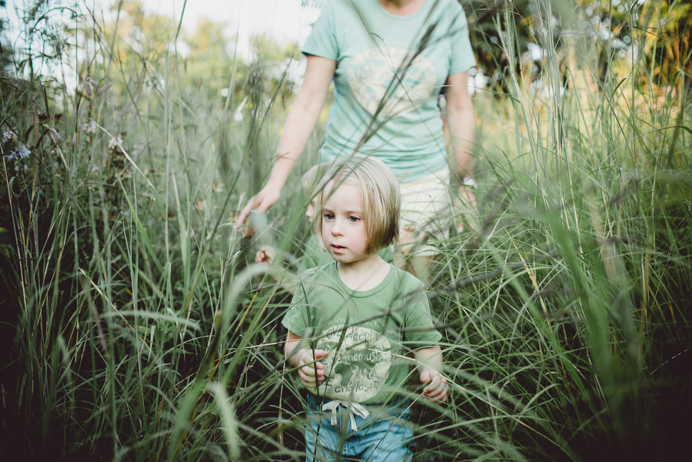 little girl exploring through tall grass with her family