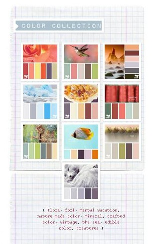 { design seeds }  Search palettes by color collection, season, or color.  |  design-seeds.com
