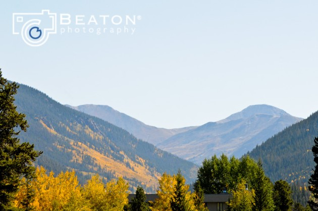 Yellow Aspen Trees + Rocky Mountains  // photo[beatonphotography.com]  Colorado Destination Wedding Photography
