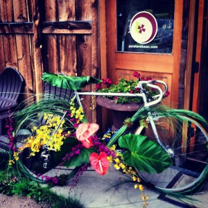 Flowery Bike by Petal and Bean in Breckenridge, Colorado