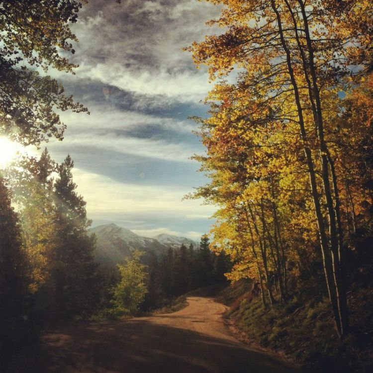 5 Scenic Drives in the Colorado High Country