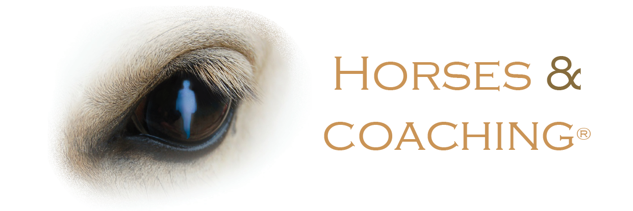 Horses and Coaching