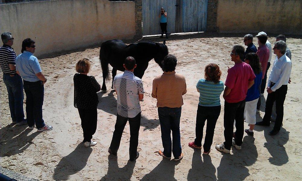 un groupe un cheval 300 dpi.jpg