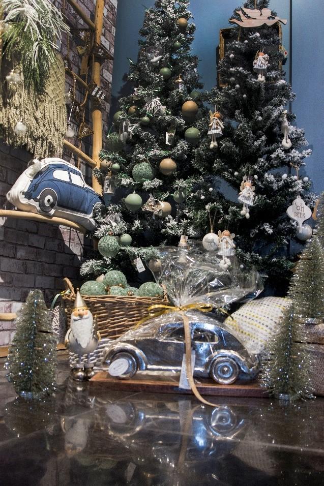 kestbomen met auto.jpg