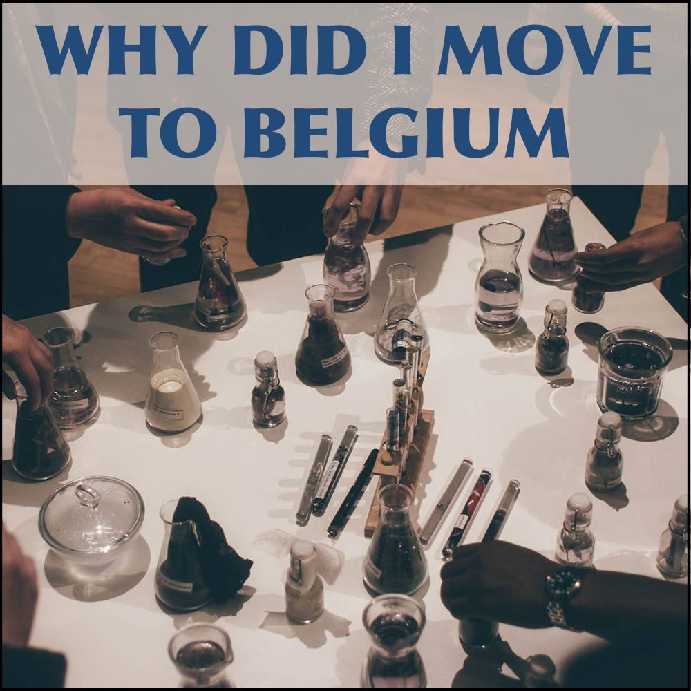 why did i move to belgium - tile.png