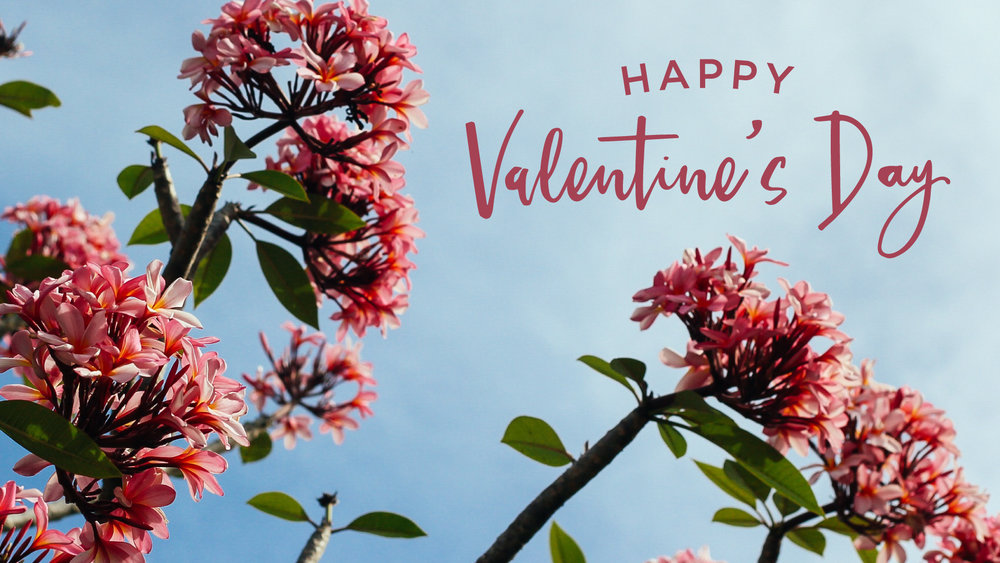 Valentines_edit.jpg