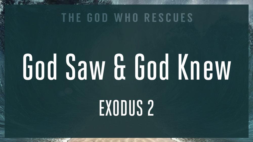 Exodus 2 God Saw and God Knew.jpg