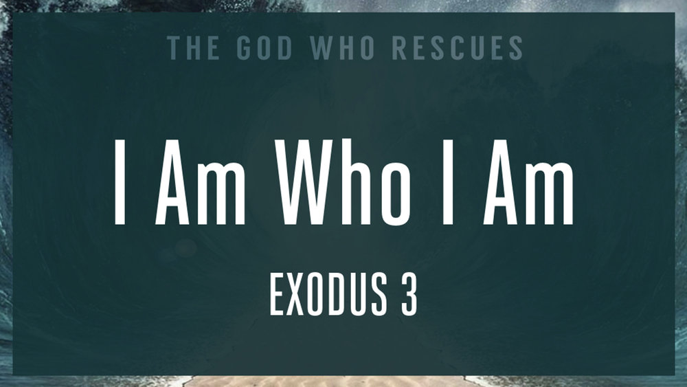 Exodus 3 I Am Who I Am.jpg