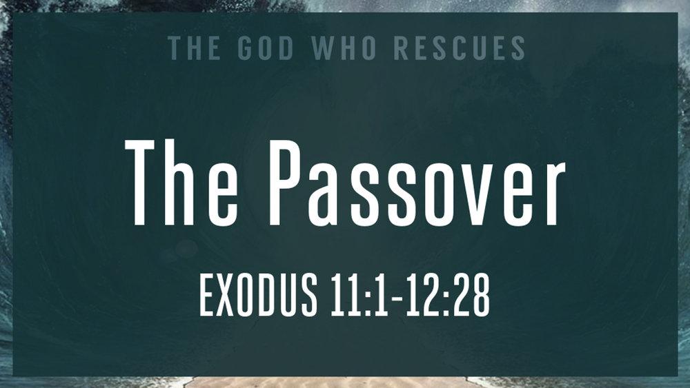 Exodus 11.1-12.28 The Passover.jpg