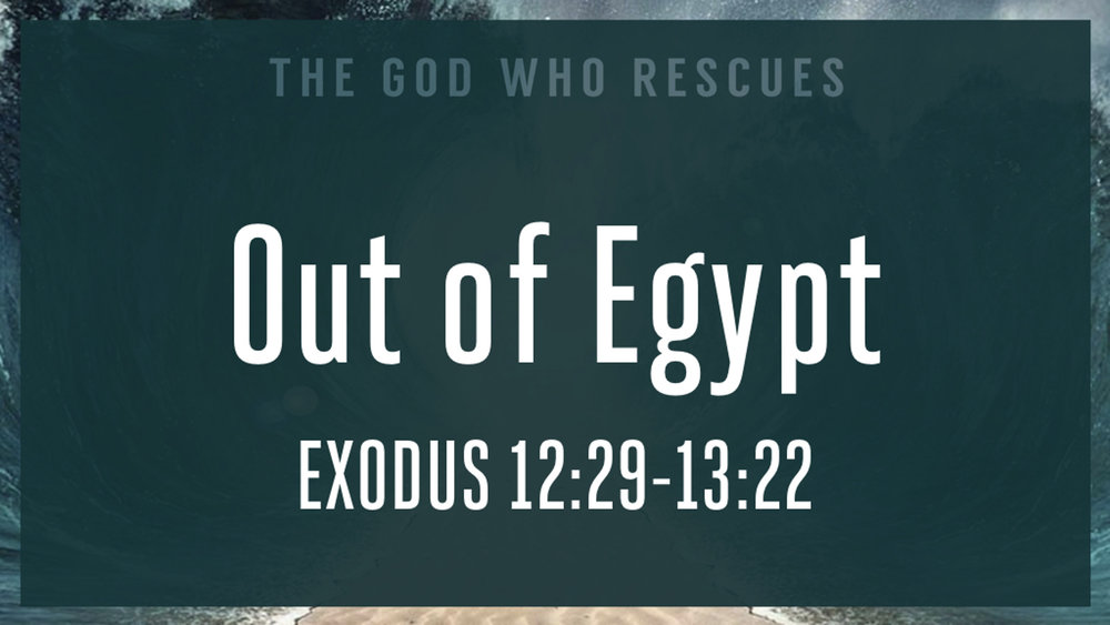 Exodus 12.29-13.22 Out of Egypt.jpg