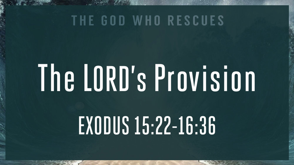 Exodus 15.22-16.36 The Lords Provision.jpg