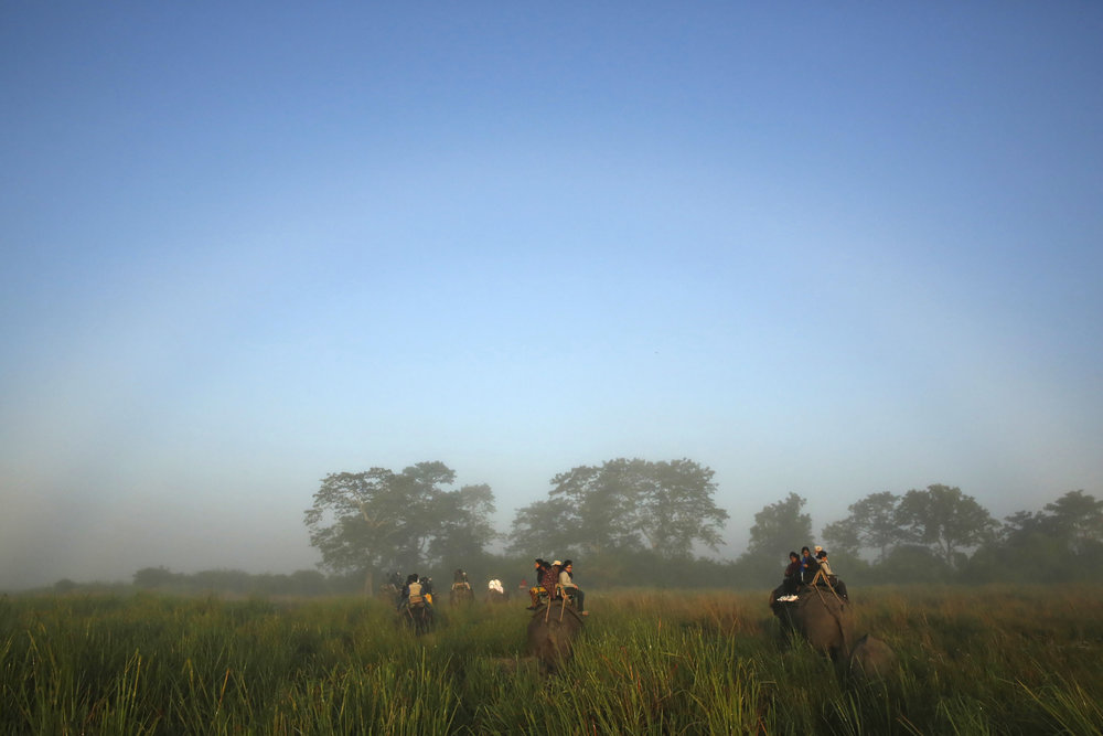 A white rainbow as seen from the back of my elephant.  Incredibly rare.  Kaziranga National Park, Assam, India, 2013.