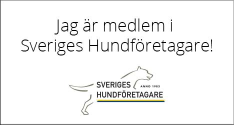 Vi är medlemmar i Sveriges Hundföretagare