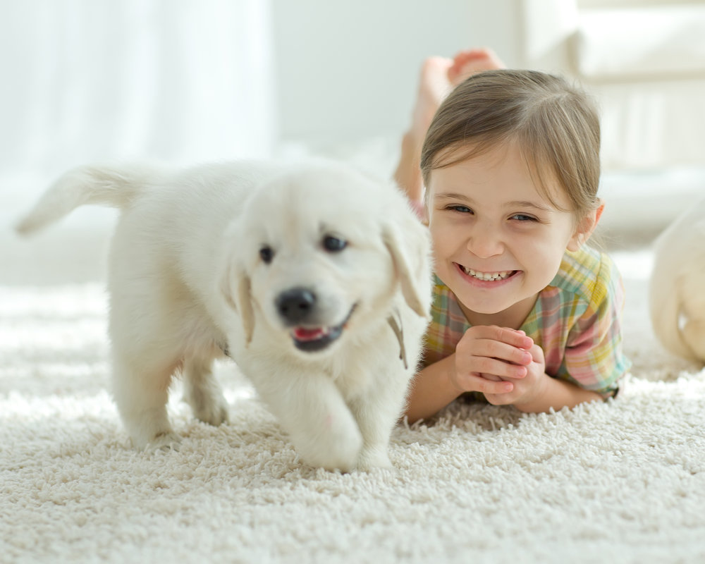 Little girl with puppy.jpg
