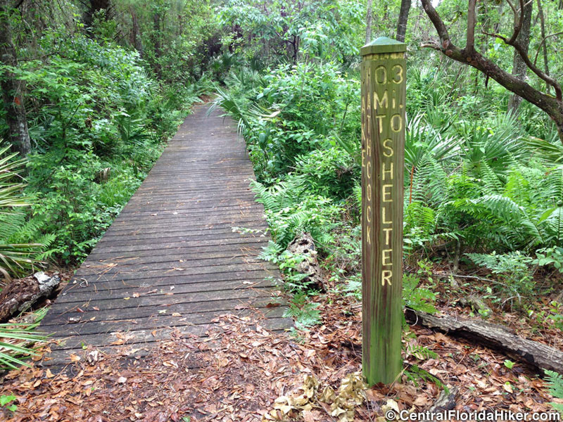 seminole-state-forest-sign-bridge.jpg