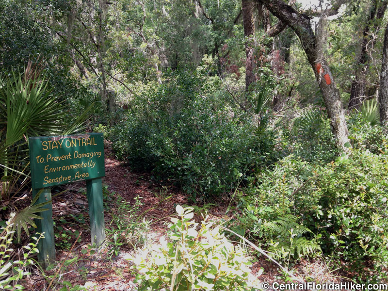 seminole-state-forest-trail-turn-off.jpg