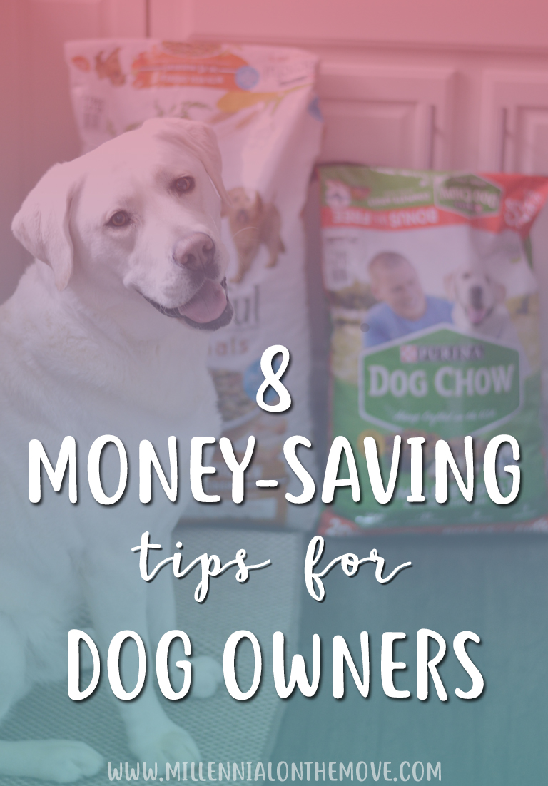 8 Money-Saving Tips for Dog Owners