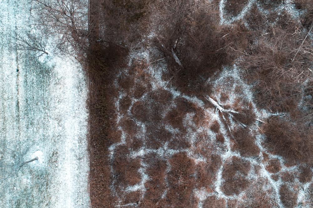 Delar Snow-3.jpg
