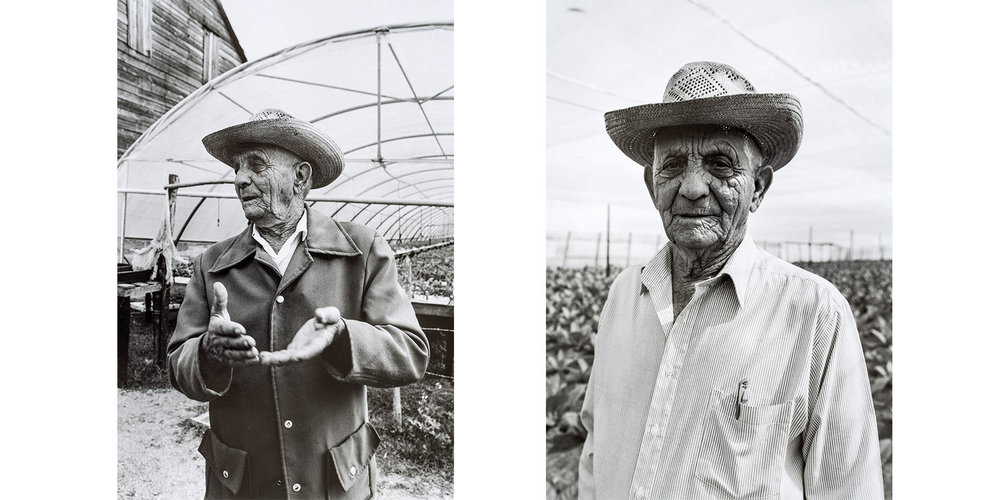 Legendary Cuban Farmer Alejandro Robaina