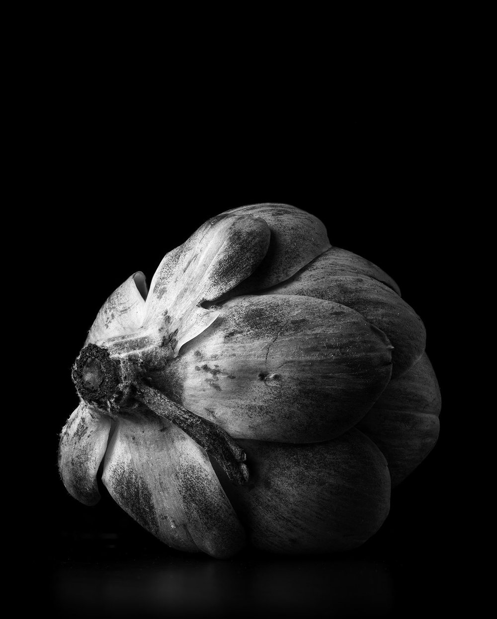 Artichoke-B&W-Final.jpg