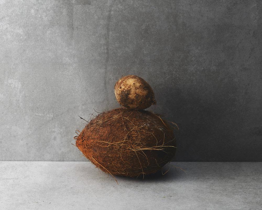 Coconut+TaroRoot.jpg