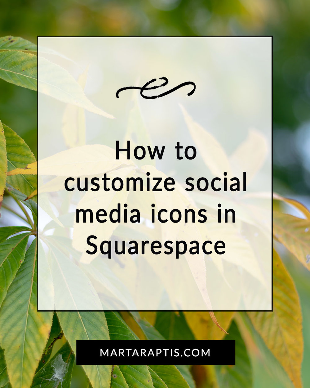 How to customize social media icons in Squarespace .jpg