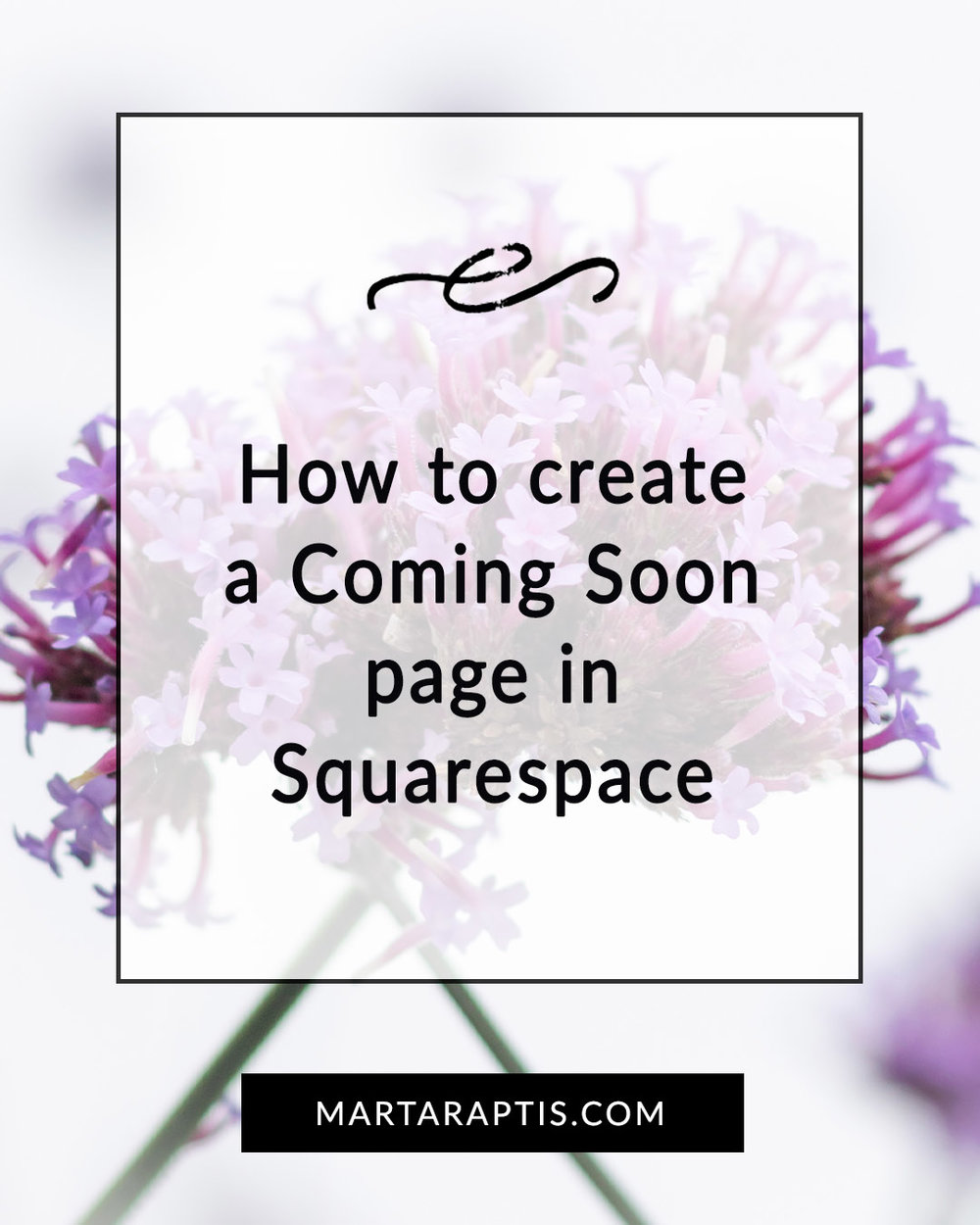 How to create a Coming Soon page in Squarespace.jpg