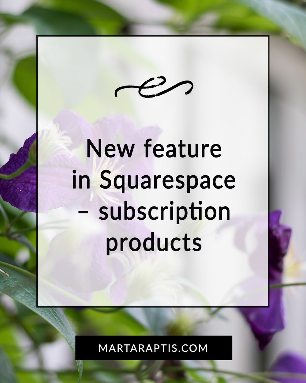 New feature in Squarespace – subscription products.jpg