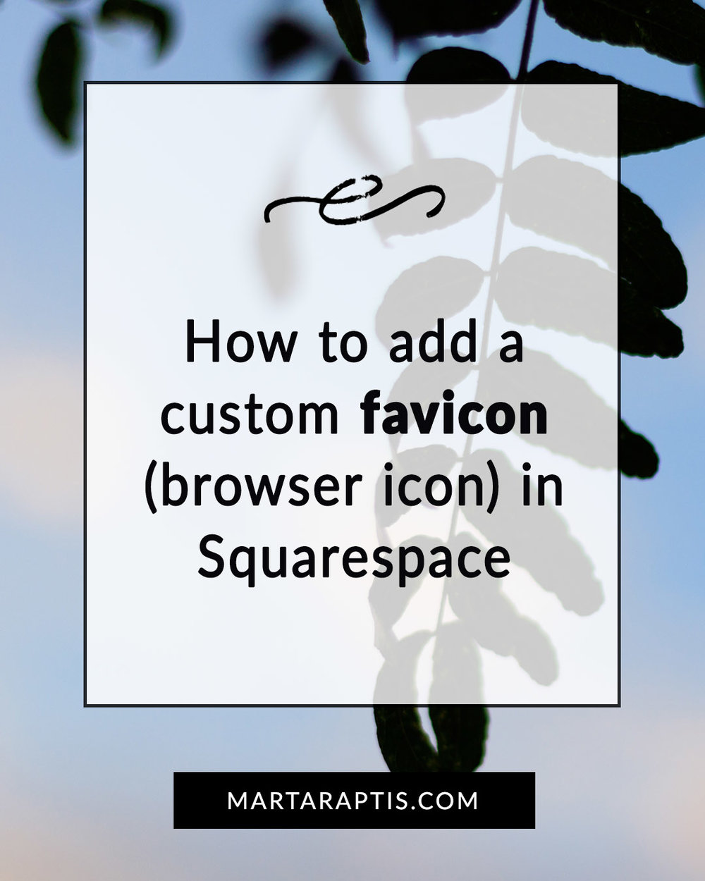 How to add a custom favicon (browser icon) in Squarespace.jpg