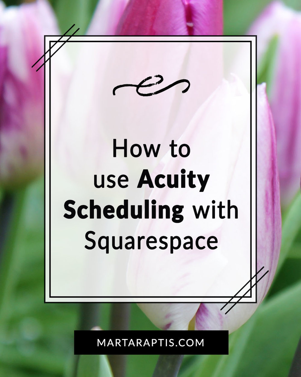 How to use Acuity Scheduling with Squarespace